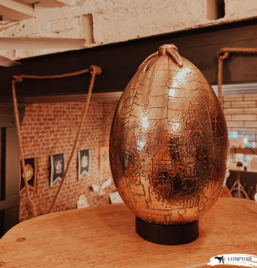Oeuf d'Or - Harry Potter