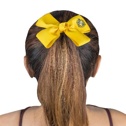 Set cheveux Poufsouffle