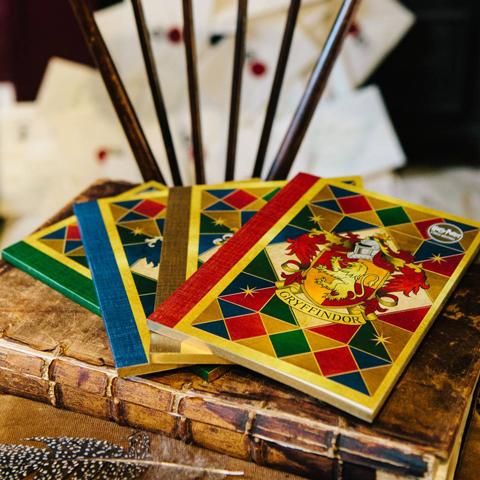 livres des 4 maisons harry potter