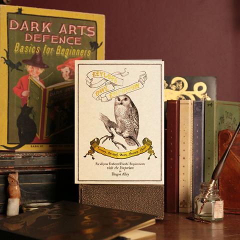 Carte 2 volets Eeylop's Owl Emporium