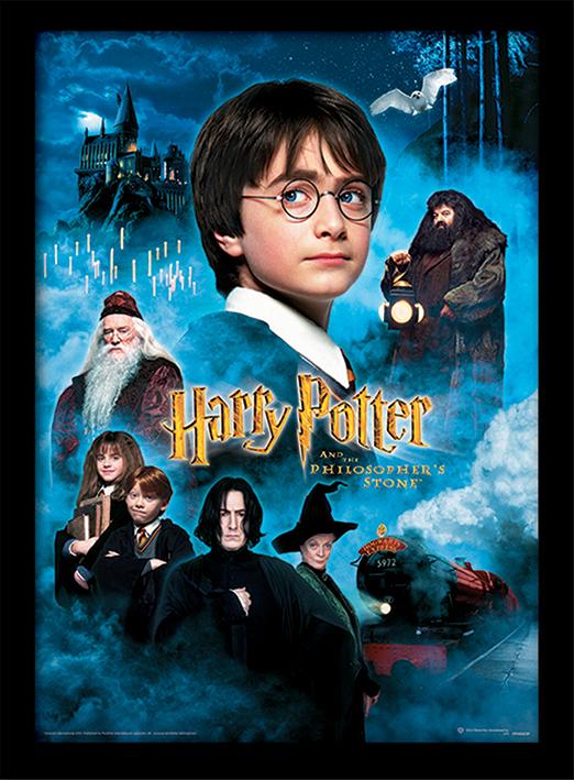 Cadre Harry Potter à l'école des Sorciers