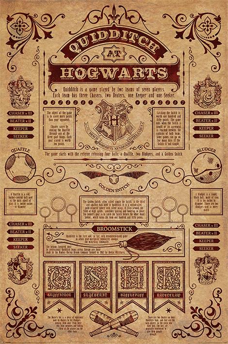 cadre quidditch poudlard