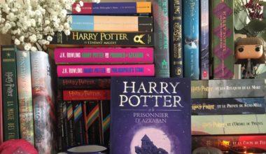 Harry Potter :  3 exemples de combat social dans la saga littéraire