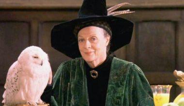 Produits officiels et vie d'un personnage : Le Professeur McGonagall – Au comptoir des sorciers