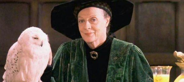 Découvrez les produits dérivés du Professeur Mcgonagall et Hedwige - Harry Potter à l'ecole des sorciers