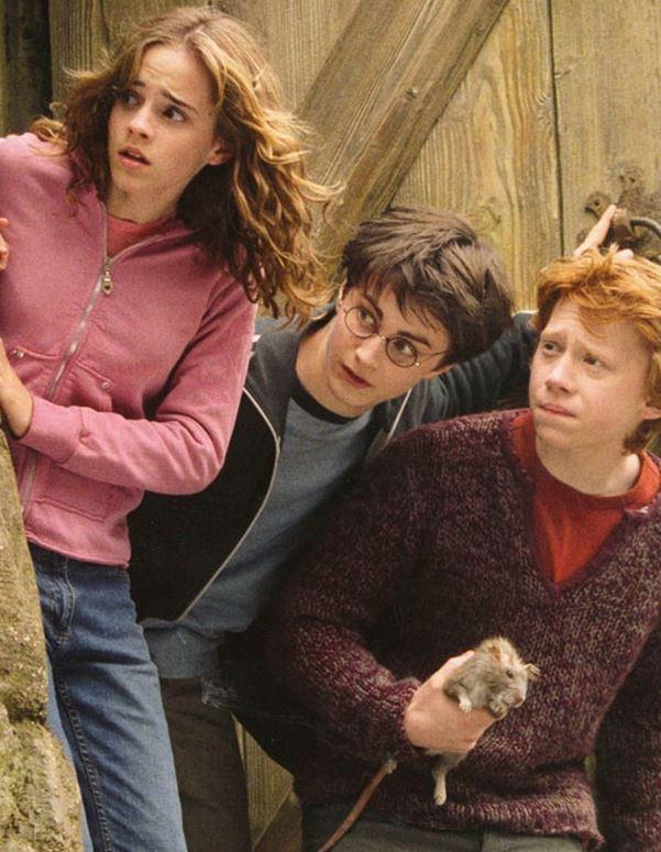 Hermione, Ron, Harry et Croûtard - Harry Potter et le Prisonnier d'Azkaban