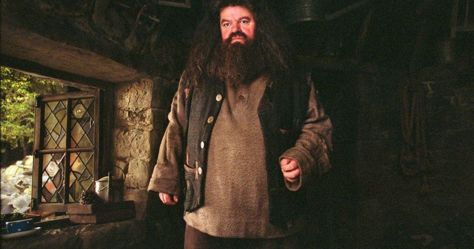 Personnage Rubeus Hagrid, produits dérviés et vie à Poudlard