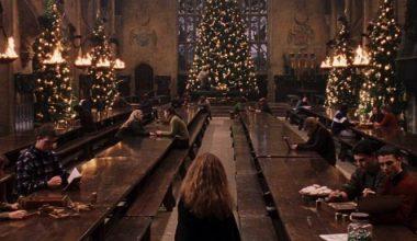 10 idées cadeaux Harry Potter pour un Noël Magique !