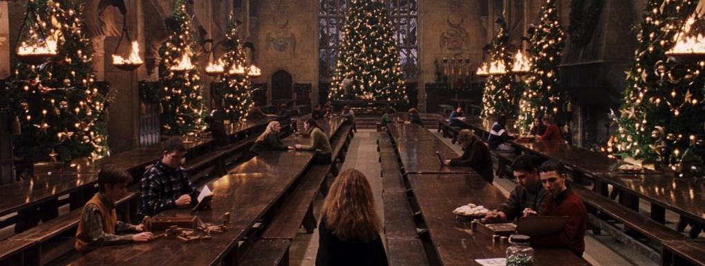 Article blog : idée cadeau de Noël - Poudlard - Harry Potter à l'école des sorciers