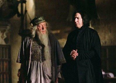 Rogue et Dumbledore - article produits dérivés Severus Rogue
