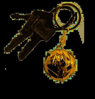 Porte-clés vif d'or 3D
