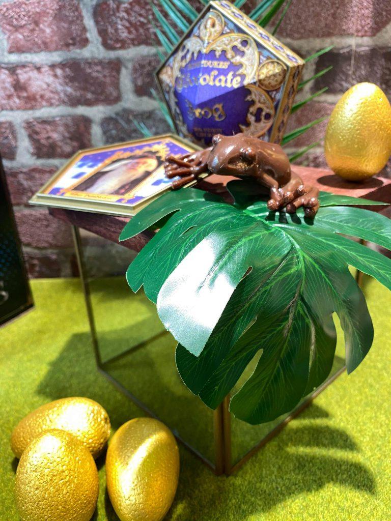 Vitrine boutique Rennes Harry Potter - produits officiels