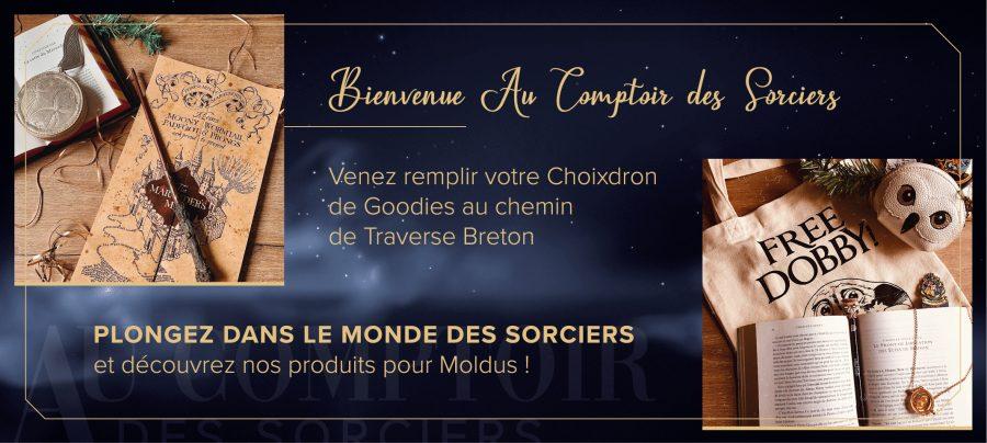 Page Accueil Au Comptoir des Sorciers