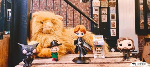 Article figurines Harry Potter