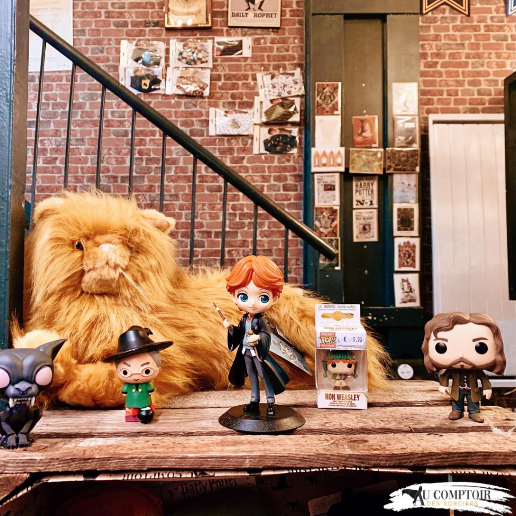 Photos de figurines Harry Potter