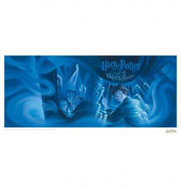 Affiche HP5