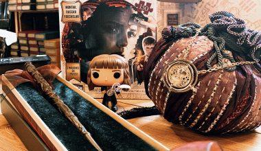 Nos POP préférées de Hermione Granger pour l'anniversaire du personnage !