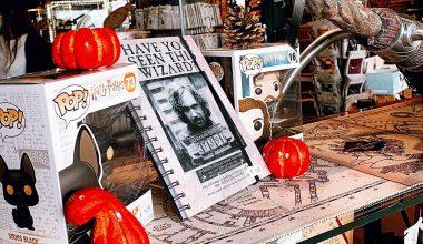 Une déco Halloween 100% Harry Potter et créée par vous ! Sortez vos baguettes et vos chaudrons…🎃