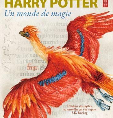 Album Harry Potter - Un Monde de magie